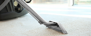 carpet cleaning company near edmonton